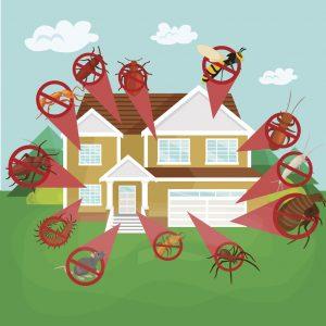 ogden-pest-control